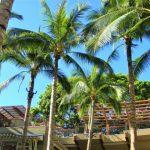 ハワイ挙式・パーティで新郎新婦やゲストにおすすめの日焼け対策