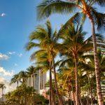 ハワイ挙式を挙げるならおすすめのベストシーズンはいつ?